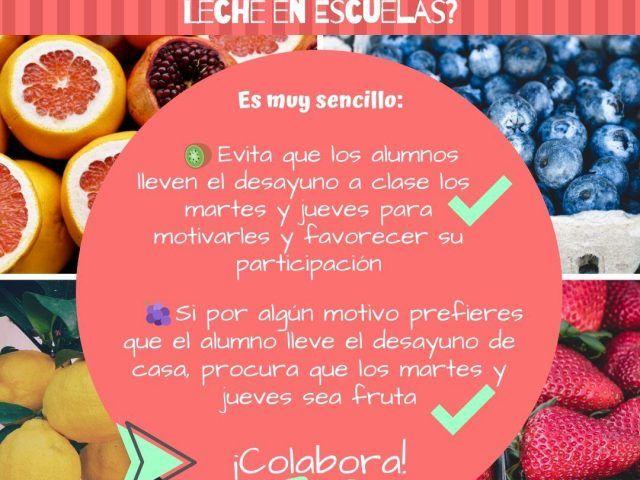 Colaboración con el programa escolar de consumo de frutas, hortalizas y leche en las escuelas